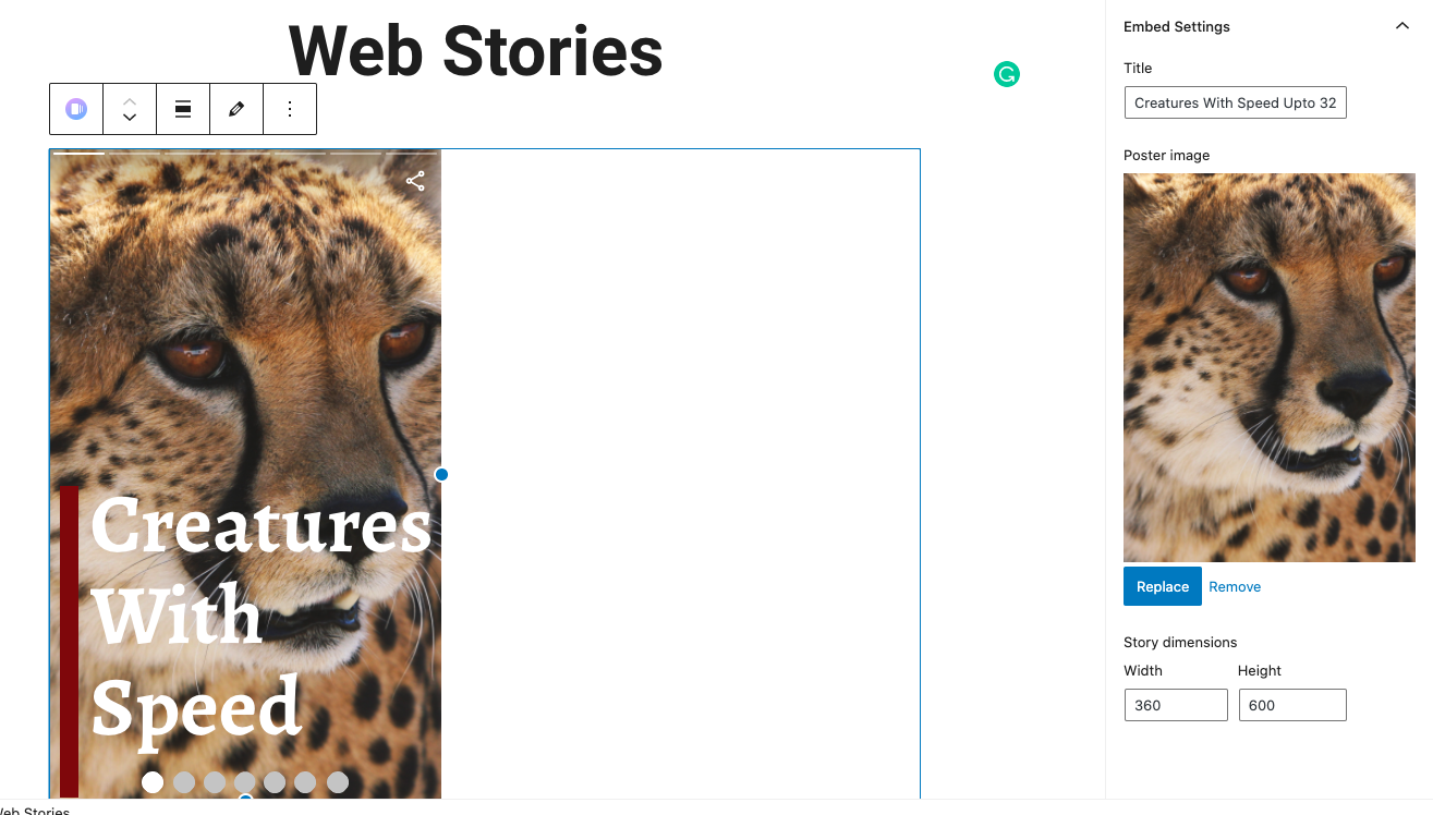 Correctly Embedding Web Stories on WordPress